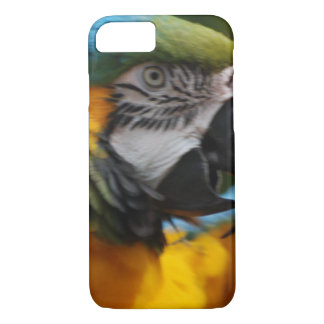 Ruffled Blue and Gold Macaw iPhone 7 Case