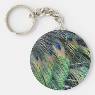 Ruffled Peacock Feathers With New Growth Key Ring