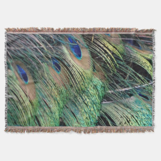 Ruffled Peacock Feathers With New Growth Throw Blanket