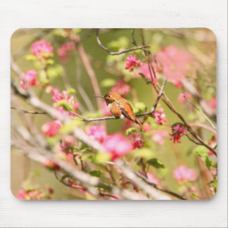 Rufous Hummingbird and Flowers Mouse Pad