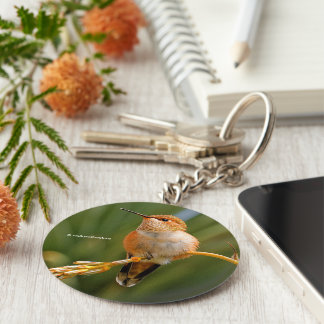 Rufous Hummingbird at Rest Basic Round Button Key Ring