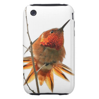 Rufous Hummingbird Bird Wildlife Animal iPhone 3 Tough Case