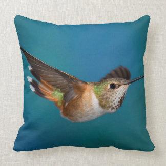 Rufous Hummingbird Cushion