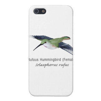 Rufous Hummingbird female with Name Case For iPhone 5