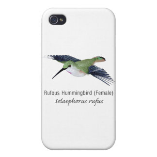 Rufous Hummingbird female with Name iPhone 4 Cases