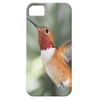 Rufous Hummingbird iPhone 5 Covers