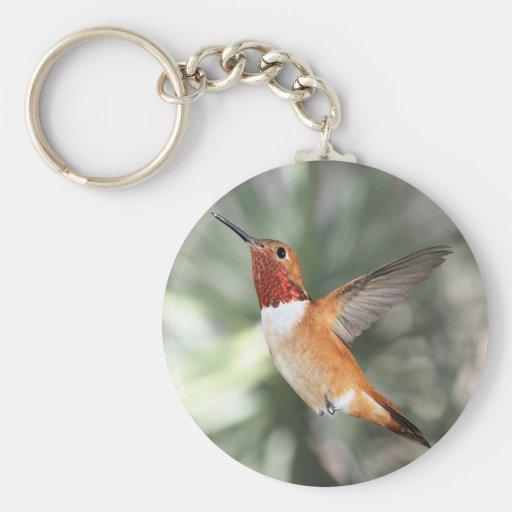 Rufous Hummingbird Key Chains