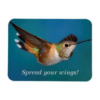 Rufous Hummingbird Magnet