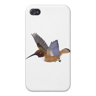 Rufous Hummingbird Male Case For iPhone 4