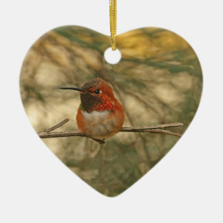 Rufous Hummingbird Sitting Christmas Ornament