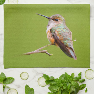 Rufous Hummingbird Sitting in the California Lilac Tea Towel