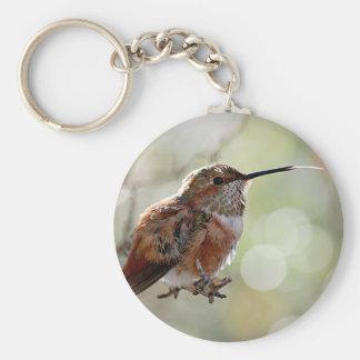 Rufous Hummingbird Tounge Basic Round Button Key Ring