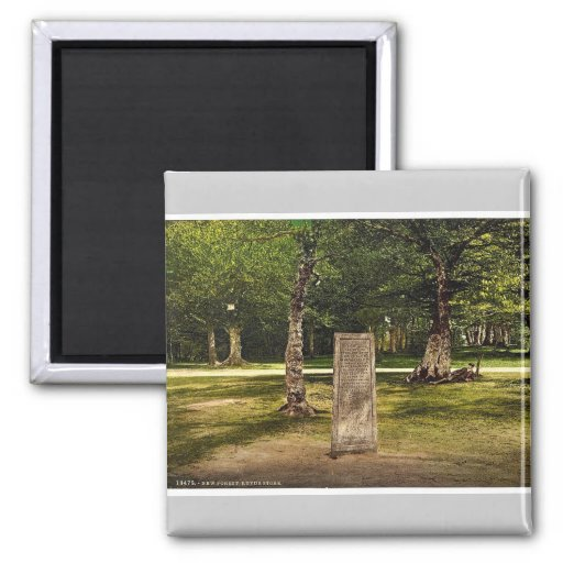 Rufus Stone, New Forest, Winchester, England rare Magnets