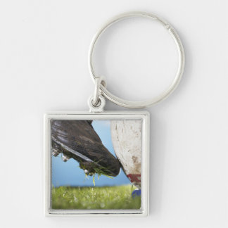 Rugby player kicking ball off tee, close up of key ring