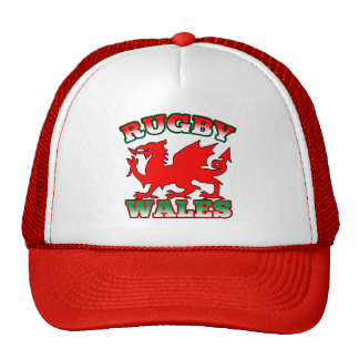 Rugby Wales Flag Dragon Cap