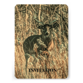 Rugged White Tail Buck in the forest Invite