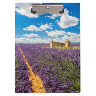 Ruin in Lavender Field, France Clipboard