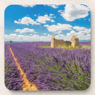 Ruin in Lavender Field, France Coaster