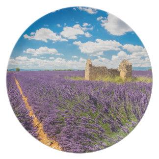 Ruin in Lavender Field, France Plate