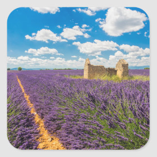 Ruin in Lavender Field, France Square Sticker