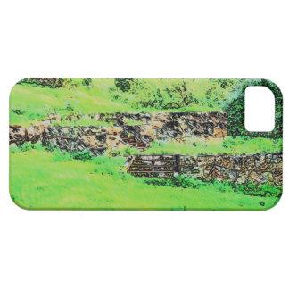 Ruin iPhone 5 Case