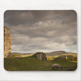 Ruins Of Cessford Castle With Sheep Grazing Mouse Mat
