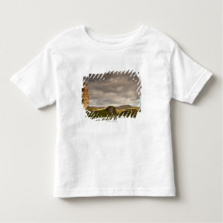 Ruins Of Cessford Castle With Sheep Grazing Toddler T-Shirt