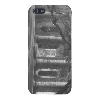 Ruins of Old Sheldon Church phone case iPhone 5 Cases