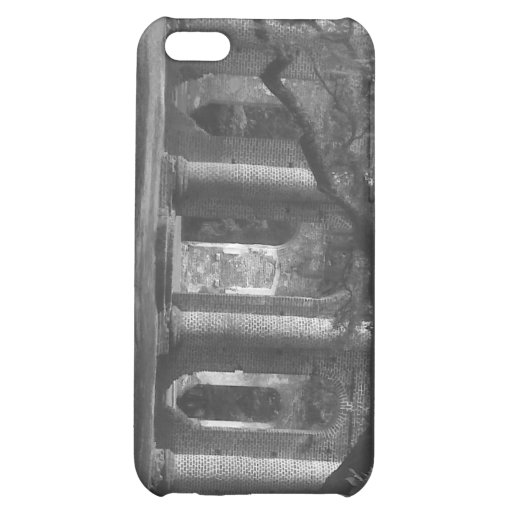 Ruins of Old Sheldon Church phone case iPhone 5C Case