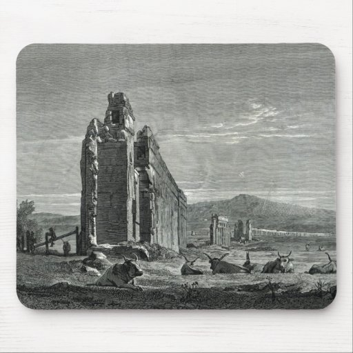 Ruins of the Aqueduct of Appius Claudius, Rome Mousepads