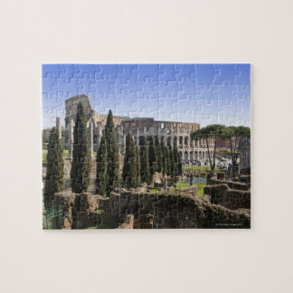 Ruins of the Roman Colosseum from Il Palatino, Jigsaw Puzzle