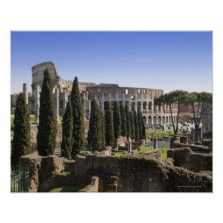 Ruins of the Roman Colosseum from Il Palatino, Poster
