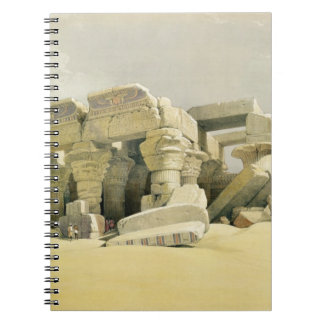 "Ruins of the Temple of Kom Ombo, from ""Egypt and N Notebooks"