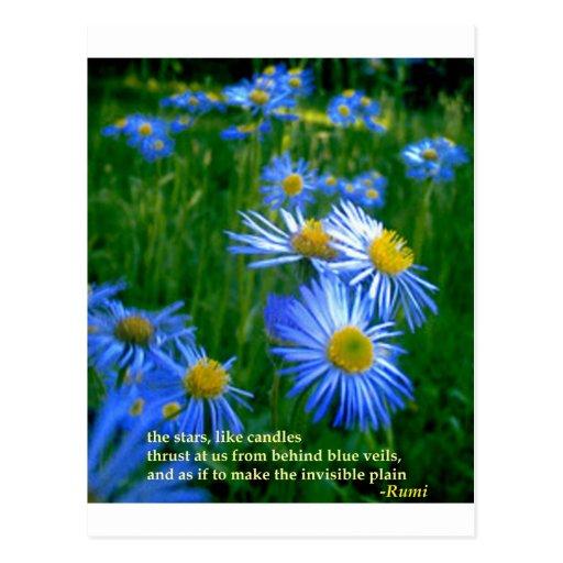 Rumi-Blue Postcard