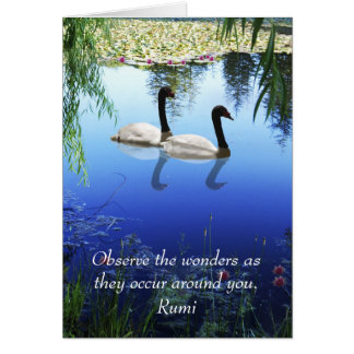 Rumi The wonders Cards