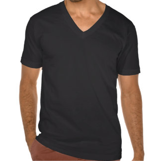 Run Aloha Men's American Apparel Fine Jersey V-Nk Tshirt