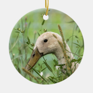Run duck in the country christmas ornament