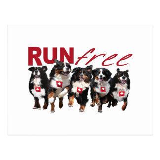 Run Free Postcard