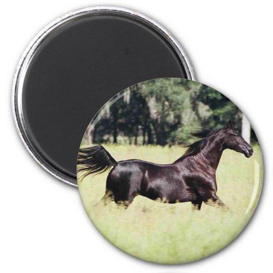 run like the wind 6 cm round magnet