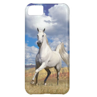 Run Wild Run Free iPhone 5C Case