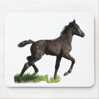 Running Black Horse Colt Mouse Pad