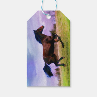 Running Brown Horse Pony Foal Western Equestrian Gift Tags