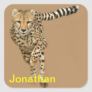 Running Cheetah Square Sticker