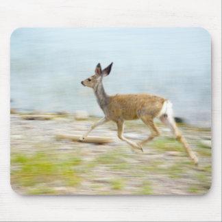 Running Fawn Mousepad