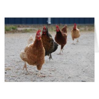 Running Hens Card