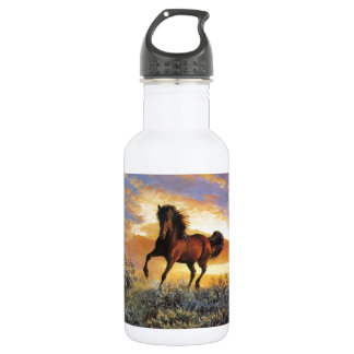 Running Horse 532 Ml Water Bottle