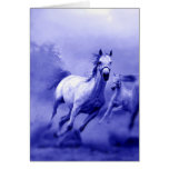 Running Horse Cards
