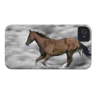 Running horse Case-Mate iPhone 4 cases