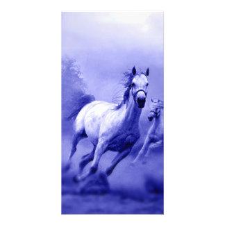 Running Horse Custom Photo Card