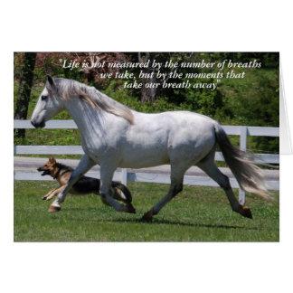 RUNNING HORSE & DOG GREETING CARD